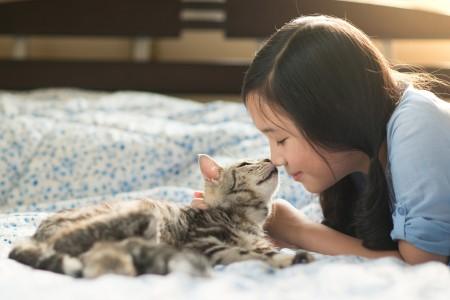 猫の健康管理
