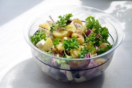 植物を食べて抗酸化作用のある栄養素を摂取